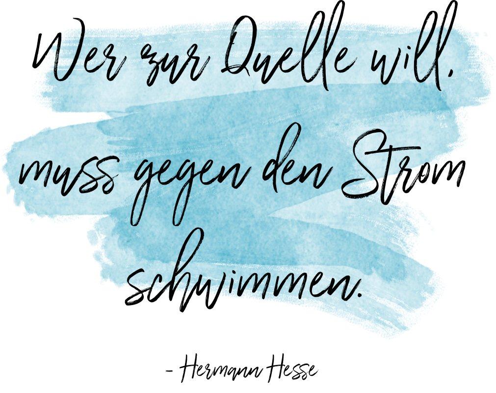 Hesse - Gegen den Strom