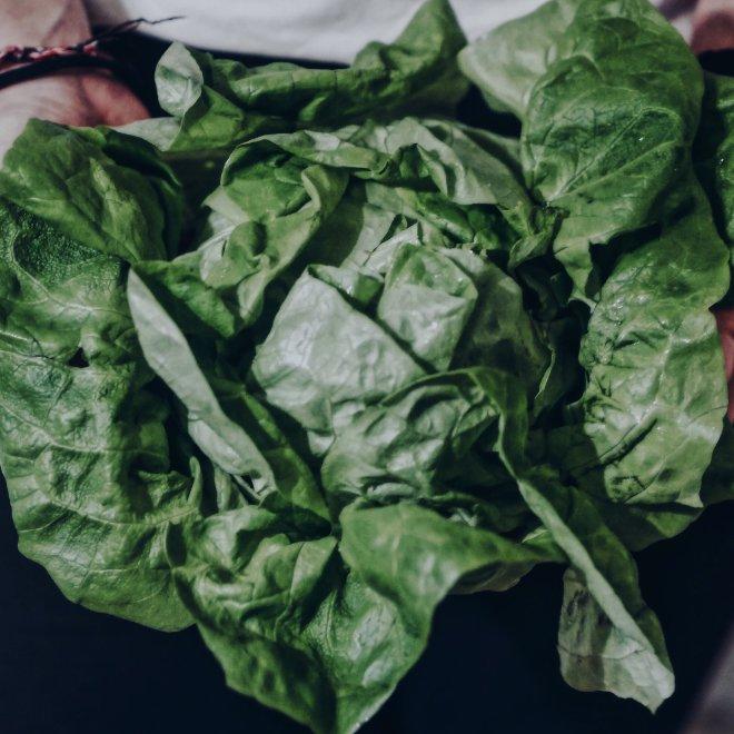 Salat Gut